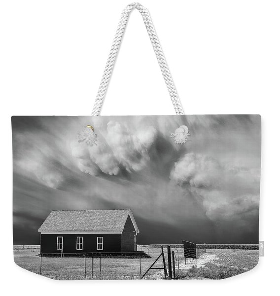 Weekender Tote Bag featuring the photograph Clarendon Lion by Scott Cordell