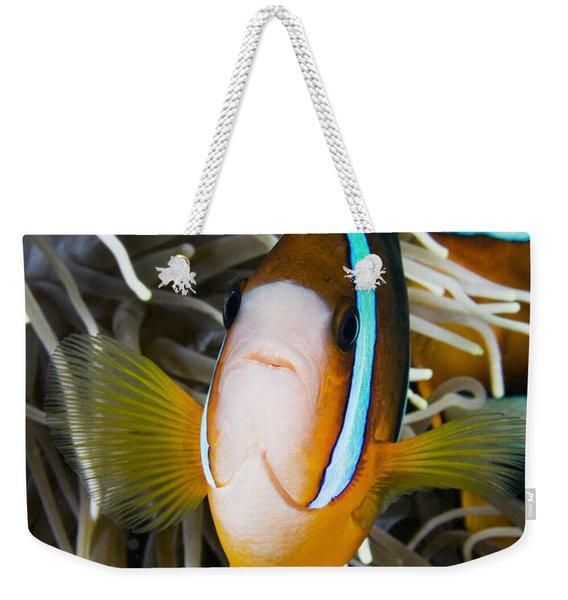 Clarks Anemonefish Weekender Tote Bag