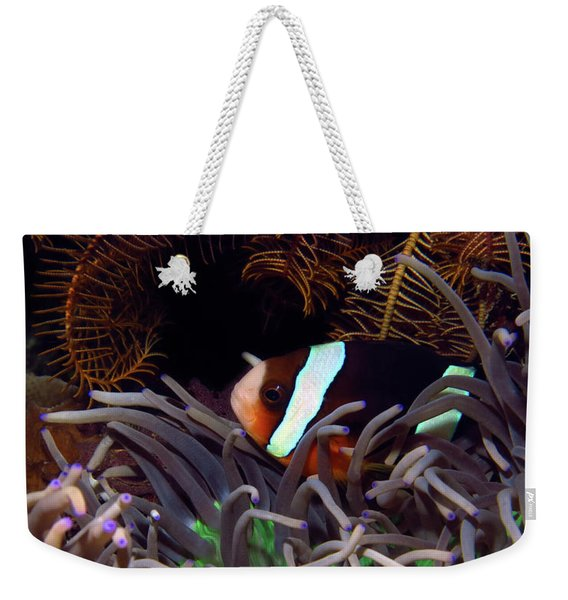 Clark's Anemonefish, Indonesia 2 Weekender Tote Bag