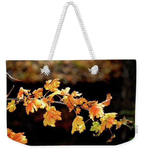 Weekender Tote Bag featuring the photograph Classic Colors by Ron Cline
