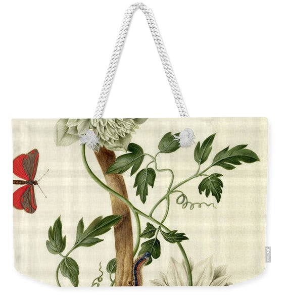 Clematis Florida With Butterfly And Caterpillar Weekender Tote Bag