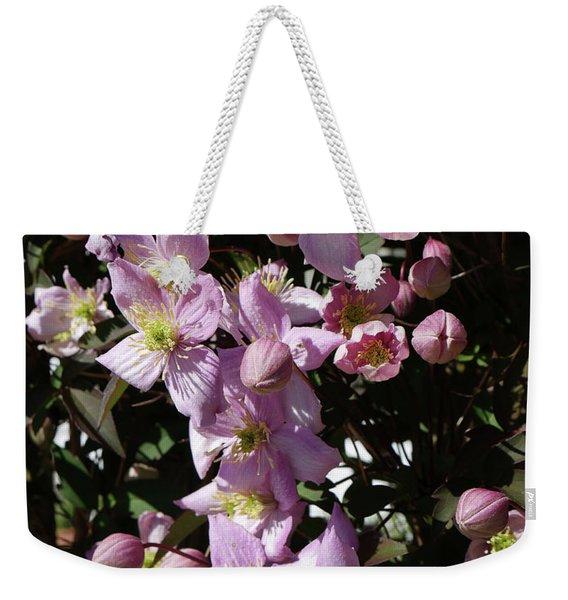 Clematis Montana  In Full Bloom Weekender Tote Bag