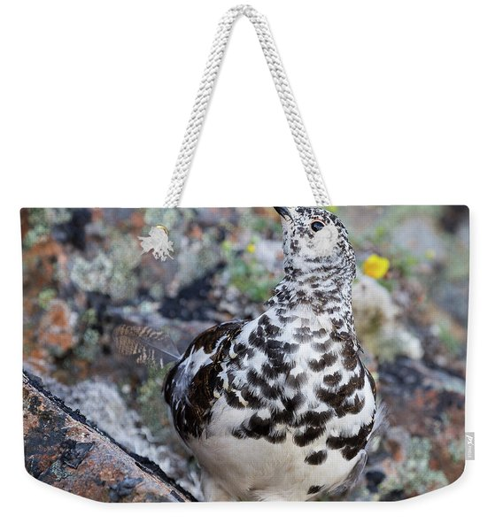 Weekender Tote Bag featuring the photograph Cliffside Showoff by Tim Newton