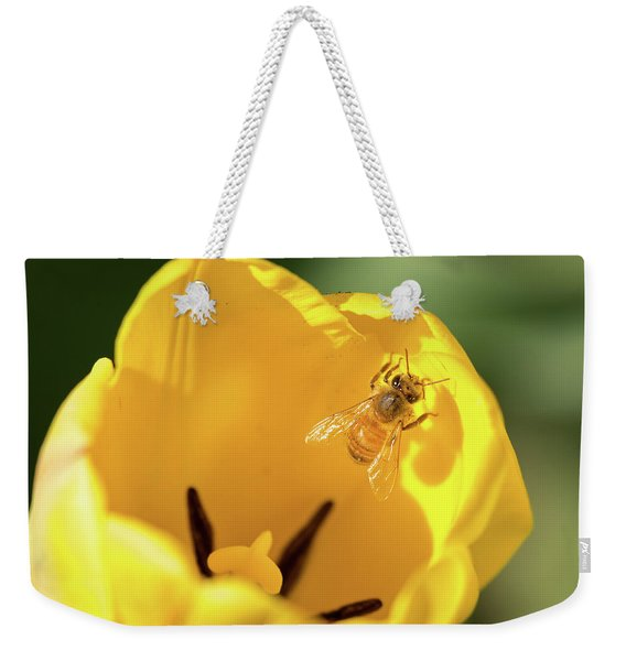 Weekender Tote Bag featuring the photograph Climbing Out by Brian Hale