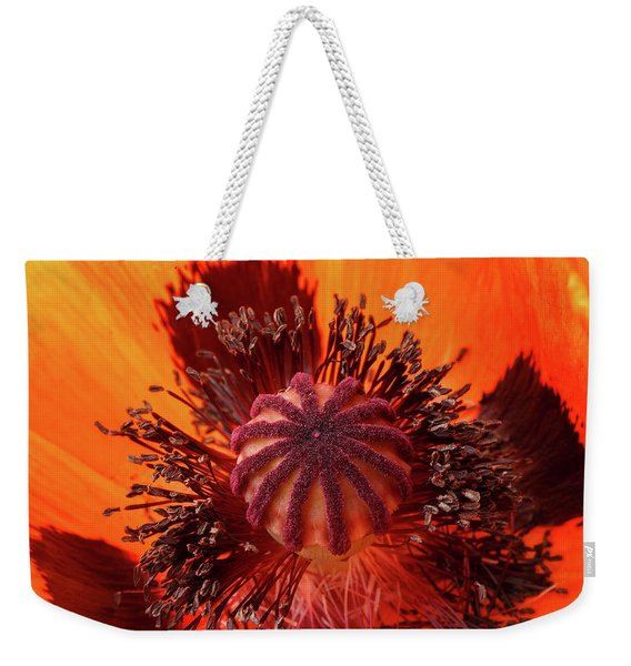 Close-up Bud Of A Red Poppy Flower Weekender Tote Bag