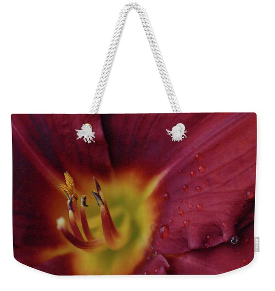 Close Up Day Lily Weekender Tote Bag
