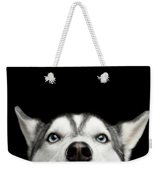 Close-up Head Of Peeking Siberian Husky Weekender Tote Bag