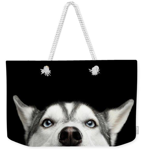 Close-up Head Of Peeking Siberian Husky Weekender Tote Bag