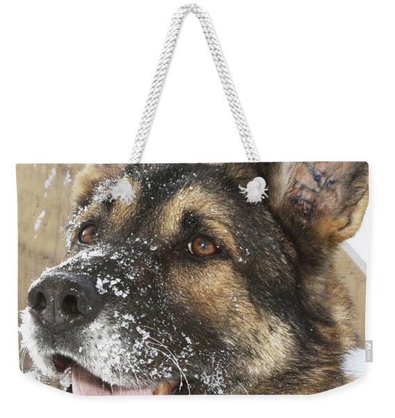 Close-up Of A Military Working Dog Weekender Tote Bag