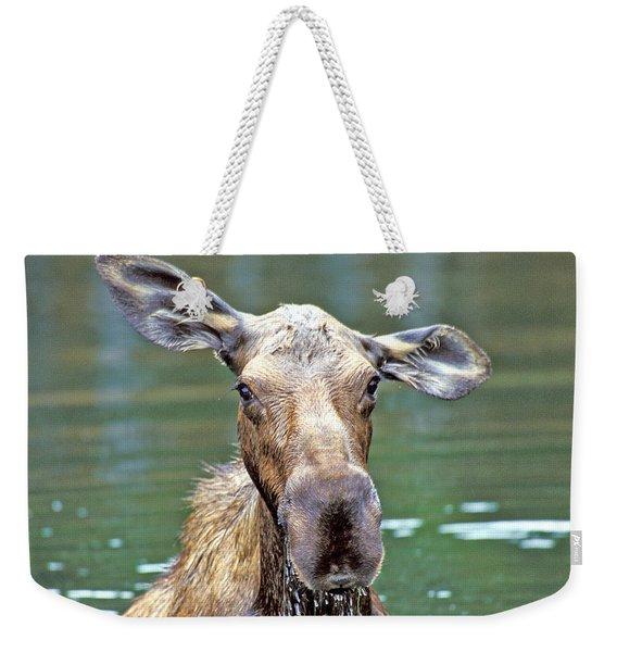 Close Wet Moose Weekender Tote Bag