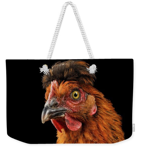Closeup Ginger Chicken Isolated On Black Background In Profile View Weekender Tote Bag
