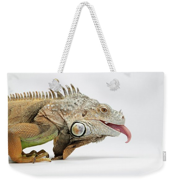 Closeup Green Iguana Showing Tongue On White Weekender Tote Bag
