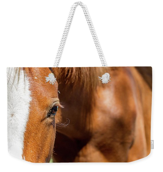 Closeup Horse Eye With Copy Space Weekender Tote Bag