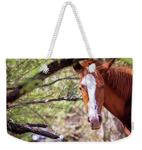Closeup Of Beautiful Wild Horse With Copy Space Weekender Tote Bag