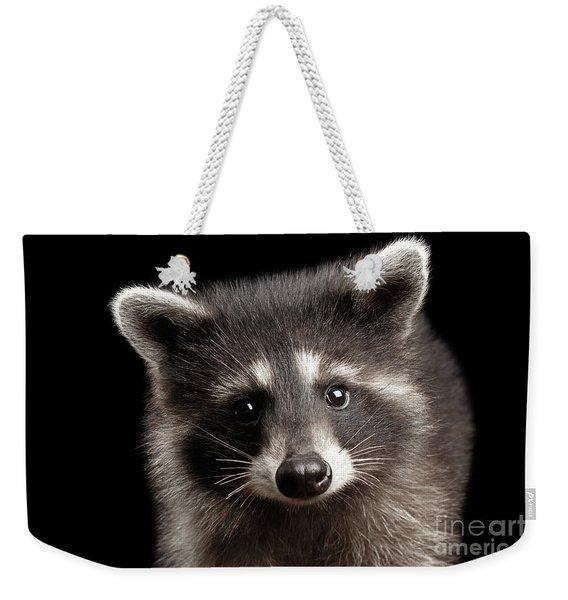 Closeup Portrait Cute Baby Raccoon Isolated On Black Background Weekender Tote Bag