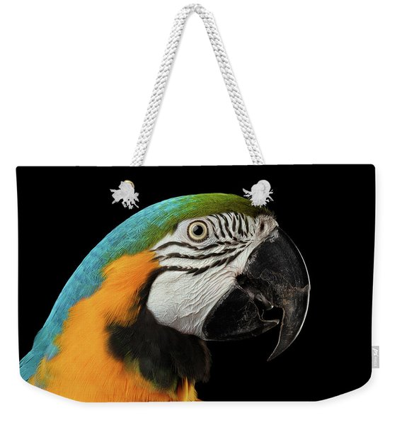 Closeup Portrait Of A Blue And Yellow Macaw Parrot Face Isolated On Black Background Weekender Tote Bag