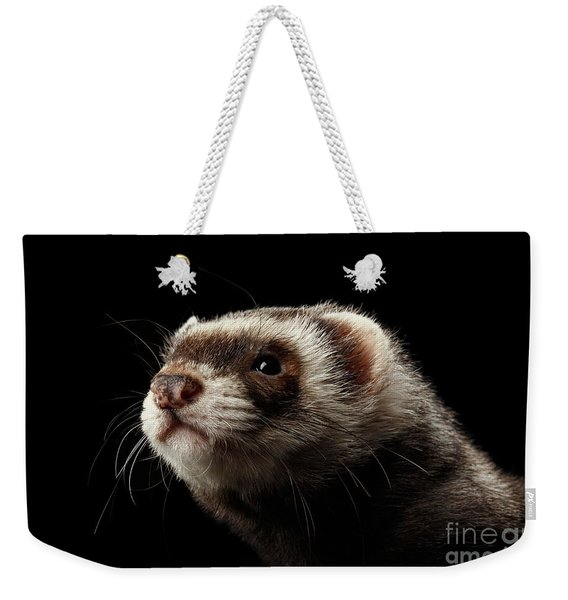 Closeup Portrait Of Funny Ferret Looking At The Camera Isolated On Black Background, Front View Weekender Tote Bag