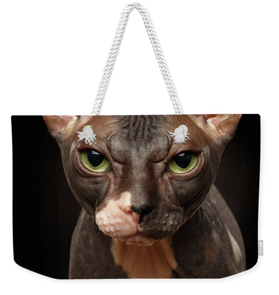 Closeup Portrait Of Grumpy Sphynx Cat Front View On Black  Weekender Tote Bag