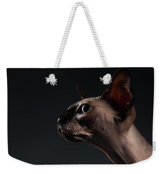 Closeup Portrait Of Sphynx Cat In Profile View On Black  Weekender Tote Bag