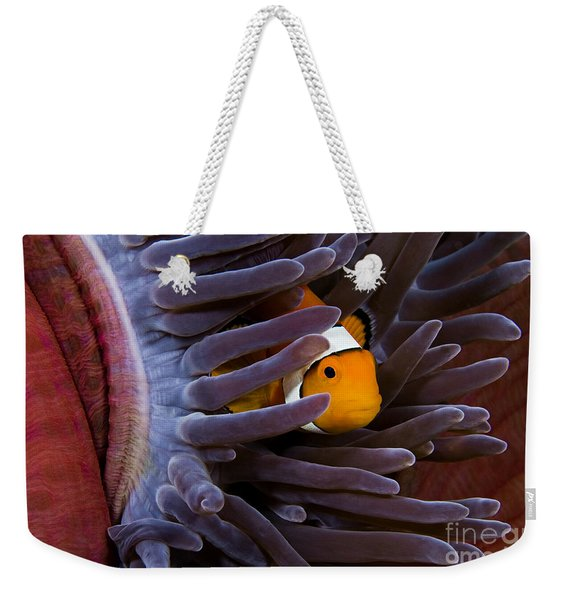 Clownfish And Anemone Weekender Tote Bag