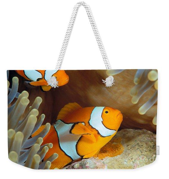 Clownfish Weekender Tote Bag