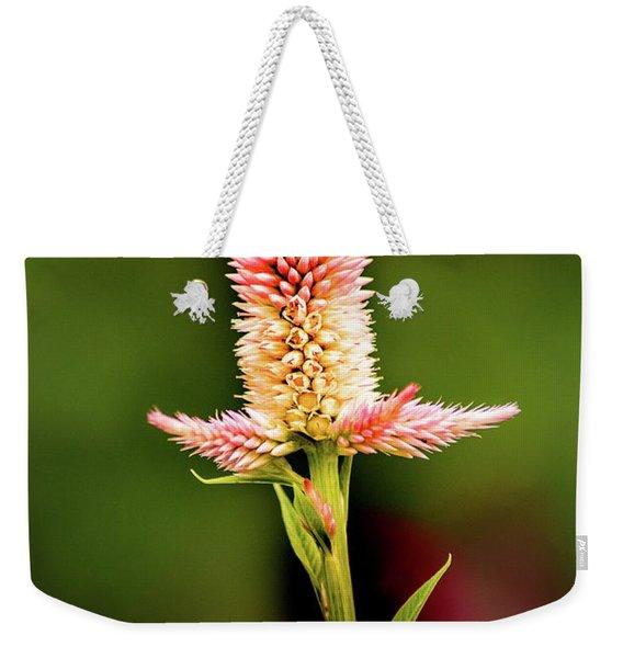 Cockscomb Weekender Tote Bag