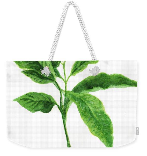 Coffee Green Leaves Weekender Tote Bag