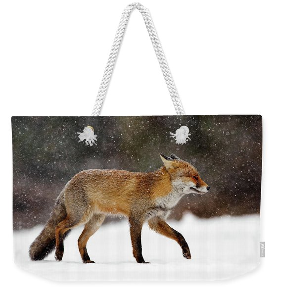 Cold As Ice - Red Fox In A Snow Blizzard Weekender Tote Bag