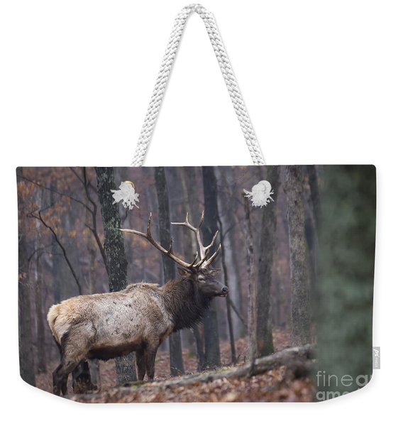 Chilly Misty Morning Weekender Tote Bag