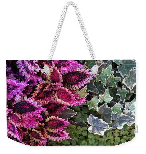 Coleus And Ivy- Photo By Linda Woods Weekender Tote Bag