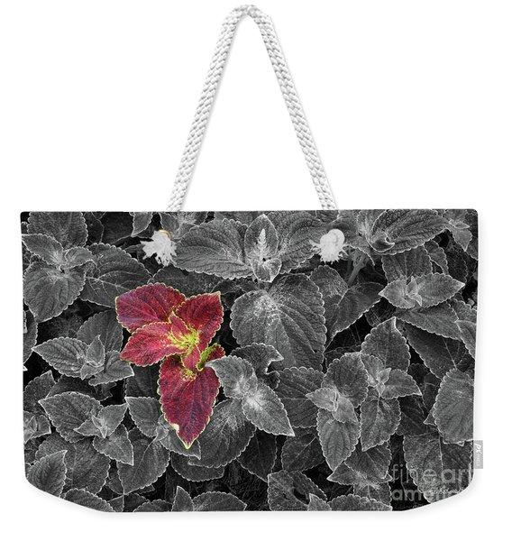 Coleus Weekender Tote Bag