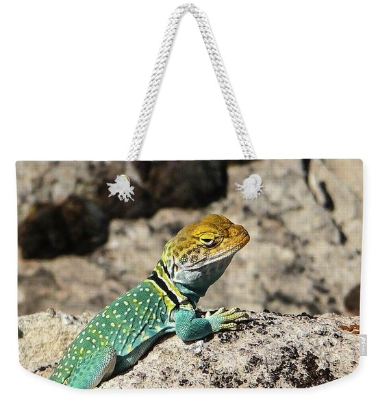 Collared Lizard Weekender Tote Bag