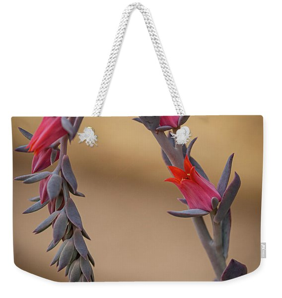 Color And Curve Weekender Tote Bag