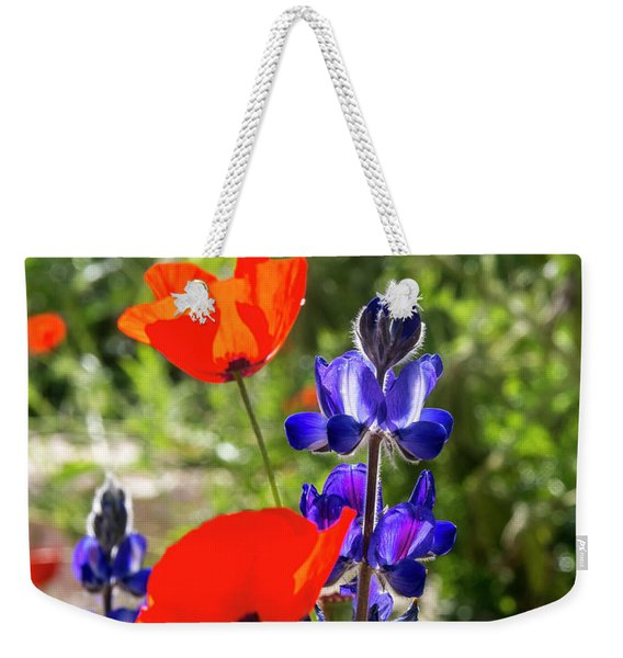 Weekender Tote Bag featuring the photograph Color Mix 02 by Arik Baltinester