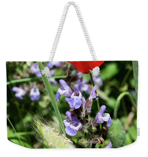 Weekender Tote Bag featuring the photograph Color Mix 05 by Arik Baltinester