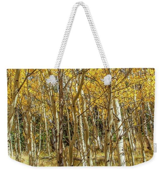 Colorado Gold Weekender Tote Bag
