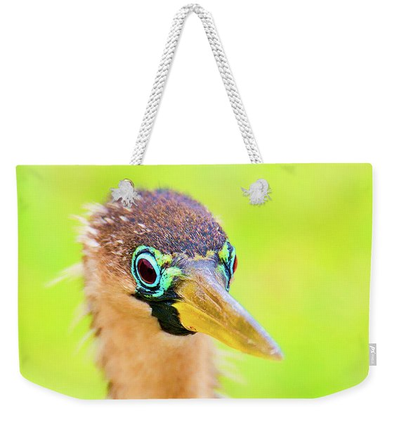 Colorful Female Anhinga Weekender Tote Bag