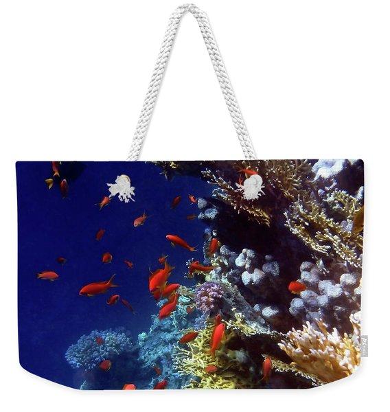 Colorful Lyretail Anthias Weekender Tote Bag