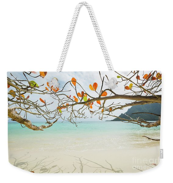 Weekender Tote Bag featuring the photograph Colorful Tree North Shore by Charmian Vistaunet