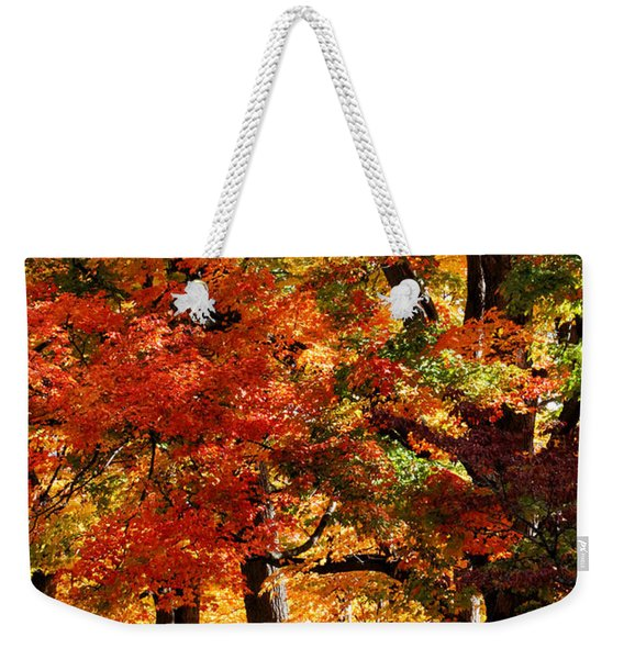 Weekender Tote Bag featuring the photograph Colors Of Fall by William Selander