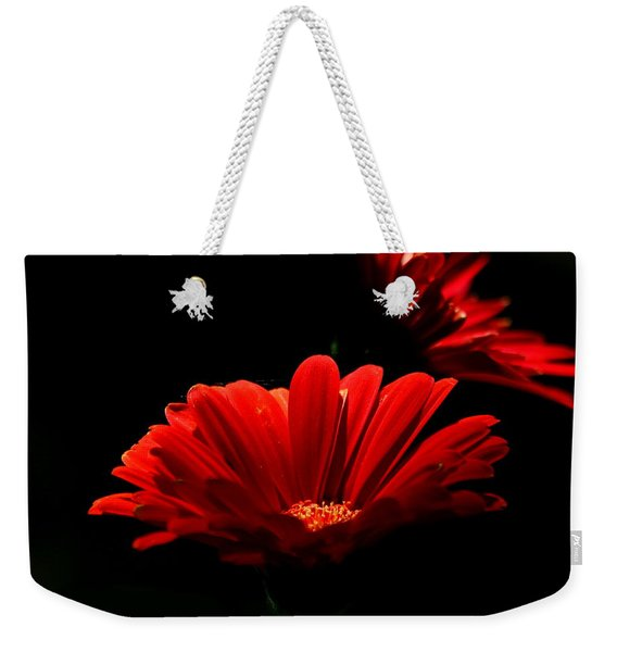 Coming In To The Light Weekender Tote Bag