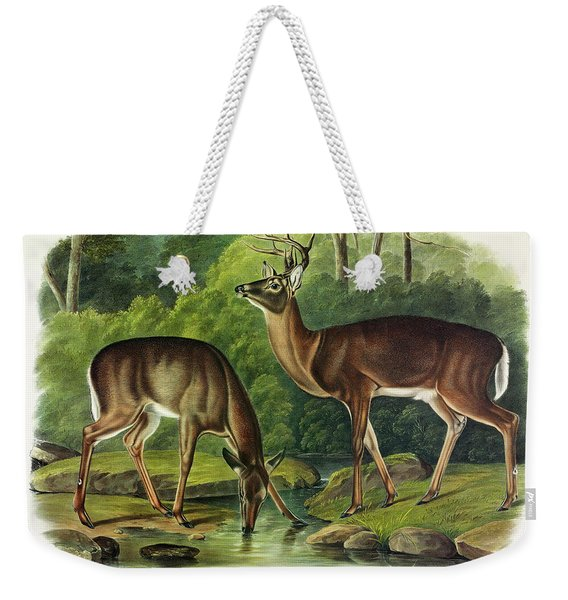 Common Deer Weekender Tote Bag