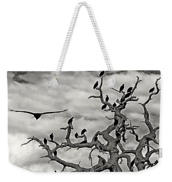 Congress Of Vultures Weekender Tote Bag