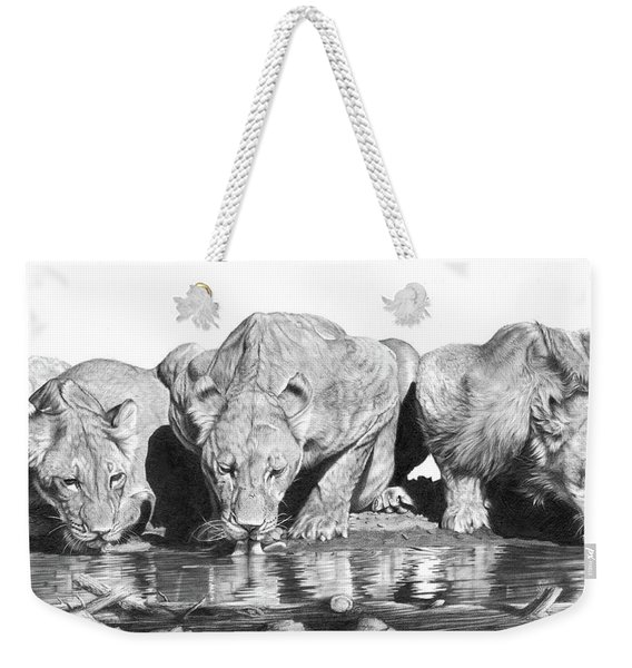 Cool For Cats Weekender Tote Bag