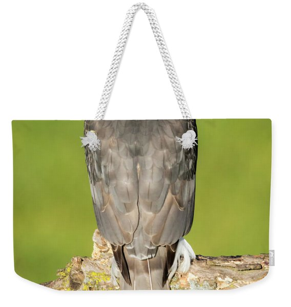 Cooper's Hawk In The Backyard Weekender Tote Bag