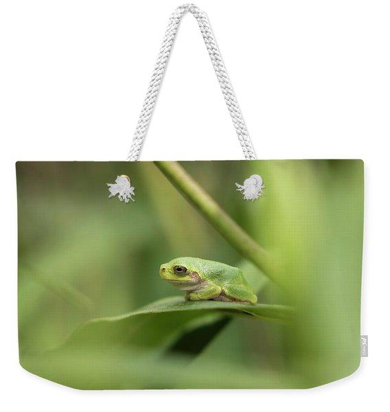 Cope's Gray Treefrog Weekender Tote Bag
