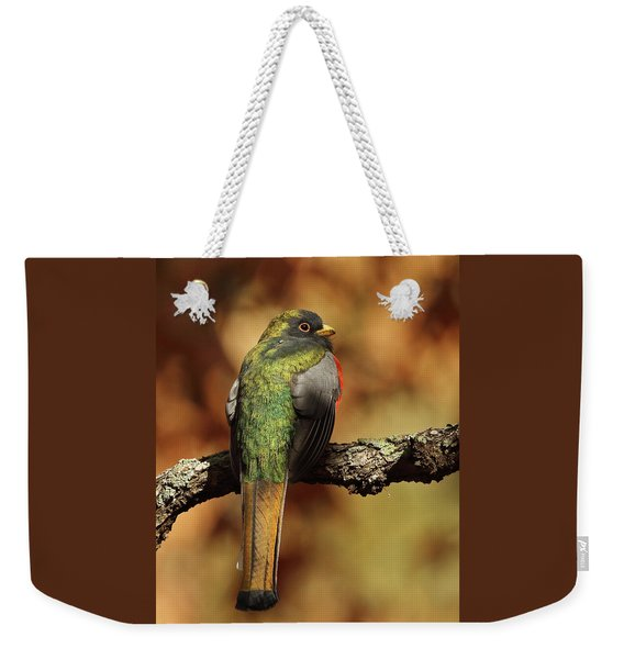 A Coppery-tailed Elegant Trogon Weekender Tote Bag