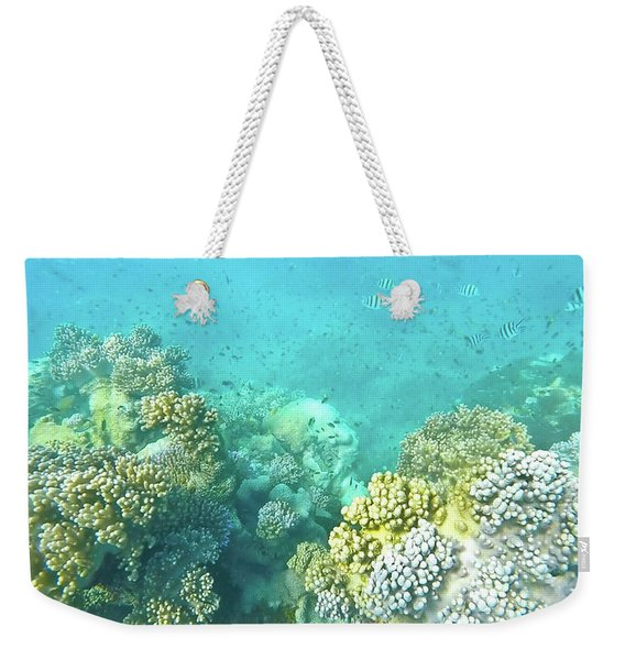 Weekender Tote Bag featuring the photograph Coral by Debbie Cundy