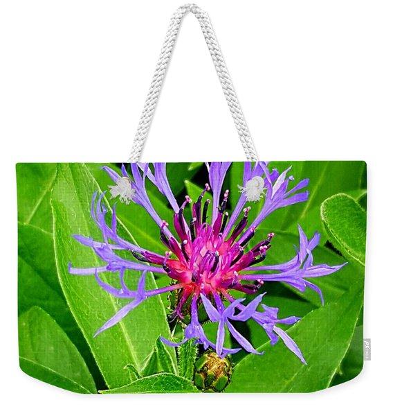 Centaurea Montana Weekender Tote Bag
