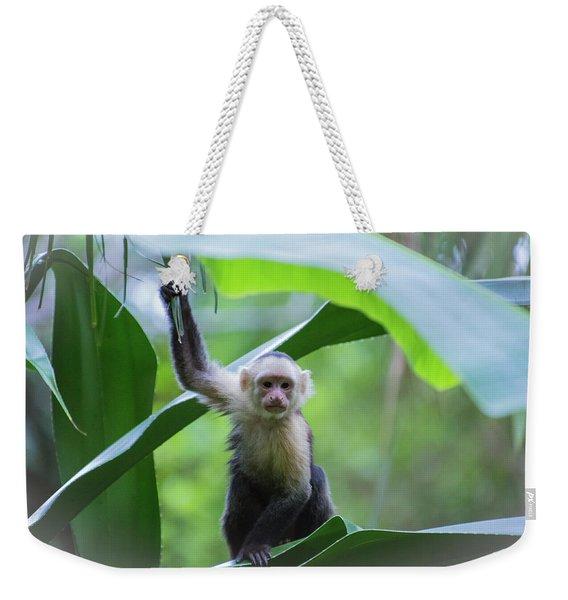 Costa Rica Monkeys 1 Weekender Tote Bag